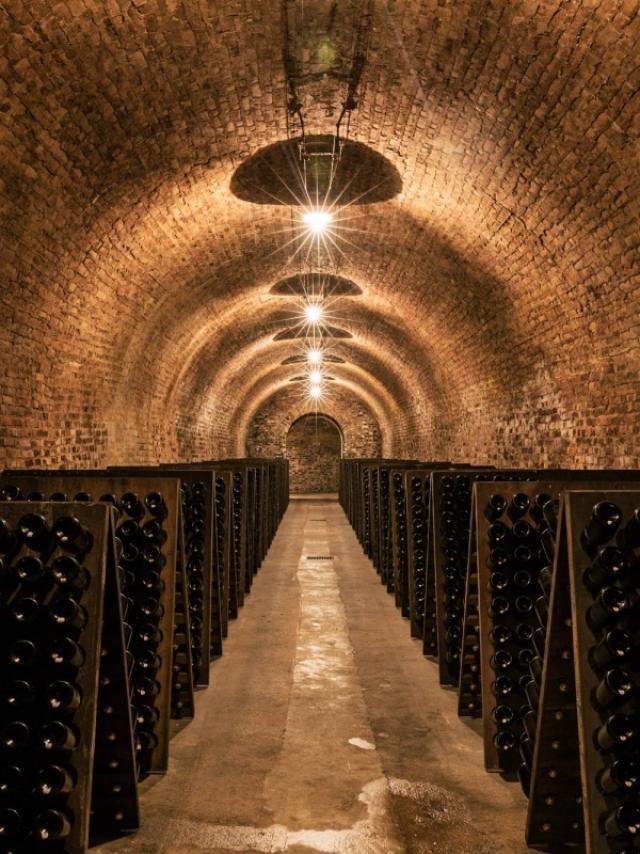Maison De Champagne Ayala Caves Cellars