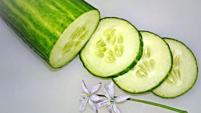 Concombre Légumes Saison Juin