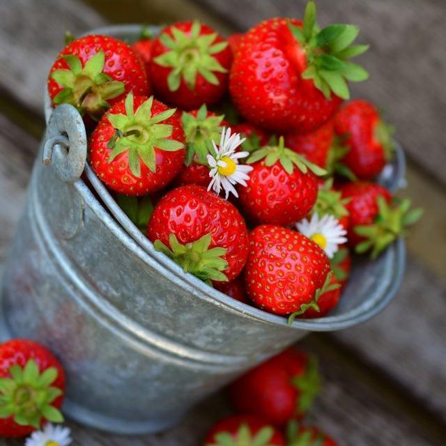 Fraises Fruit Saison Ete Juillet