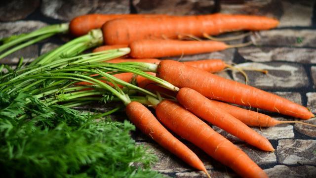 Legumes Janvier Carottes