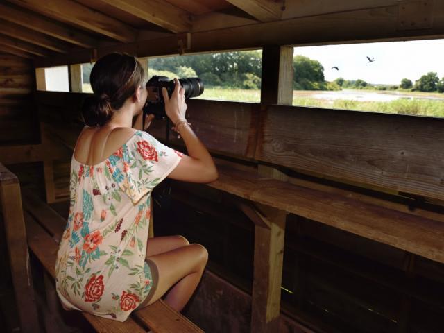 Observatoire Ornithologique Lac Du Der