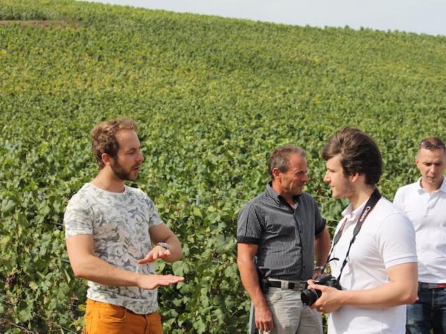 The Champagne Tour Co Visite Guidee Vignes
