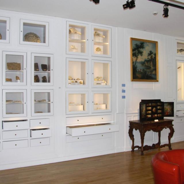 Musee Art Et Histoire Sainte Menehould Salle Des Collections