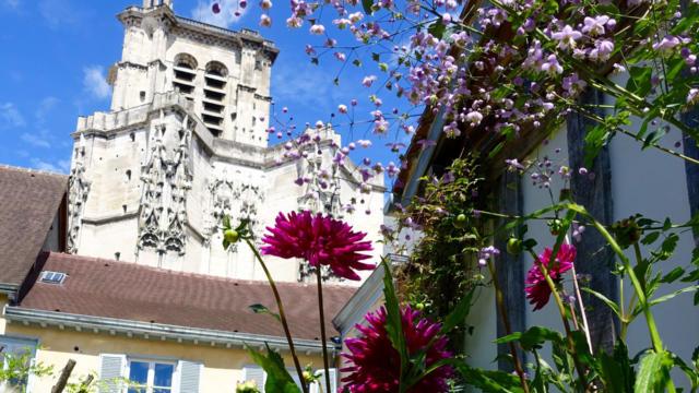 Jardindelacathedrale Jardin16v