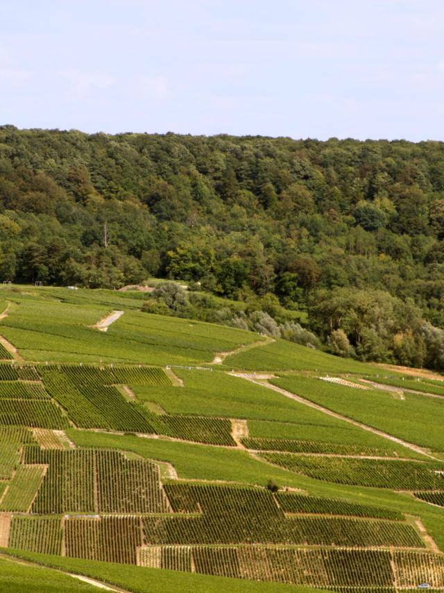 00-valle-de-la-marne-crdit-photo-crtca.jpg