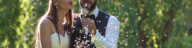 15-champagne-tassin-visite-romantique.jpg