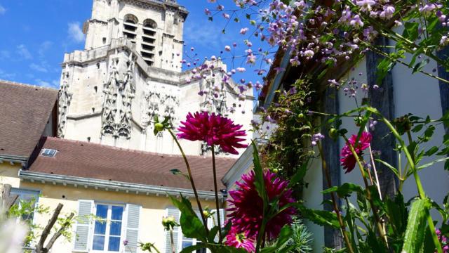 jardindelacathedrale-jardin16v.jpg