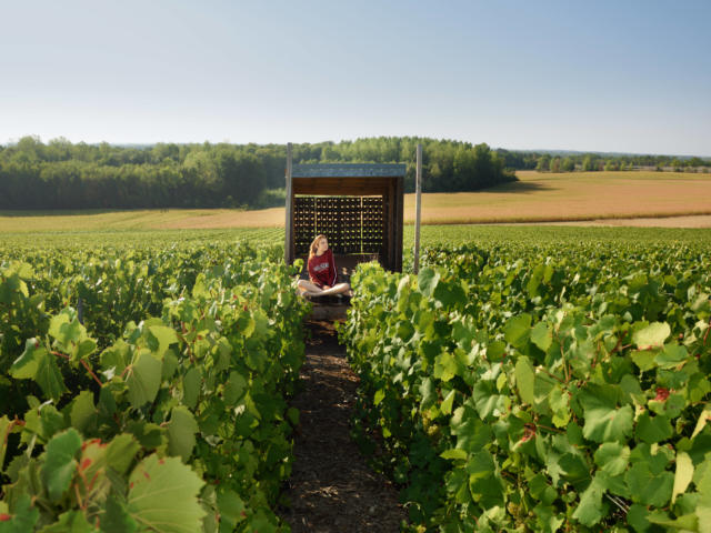 loge-de-vignes-vronique-montan-collection-ot-lac-du-der.jpg