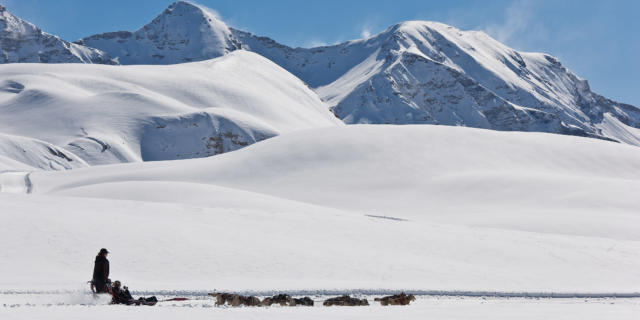 Station de ski Orcières 1850, vallée du Champsaur, Hautes-Alpes; 05 Village nordique de Williwaw, partez pour une balade à la tête d'un attelage, ou dans le traîneau du meneur de chien (musher) pour glisser sur les pentes douces des haut plateaux d'altitudes de Rocherousse.