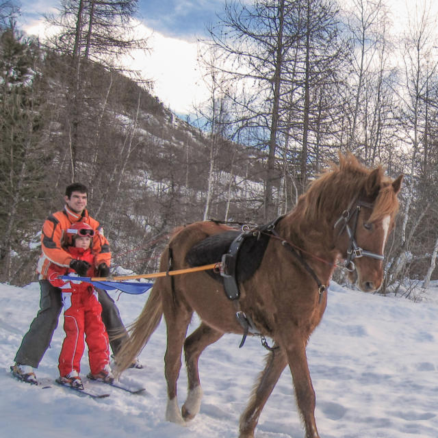 Ski Joering à la Base de Loisirs