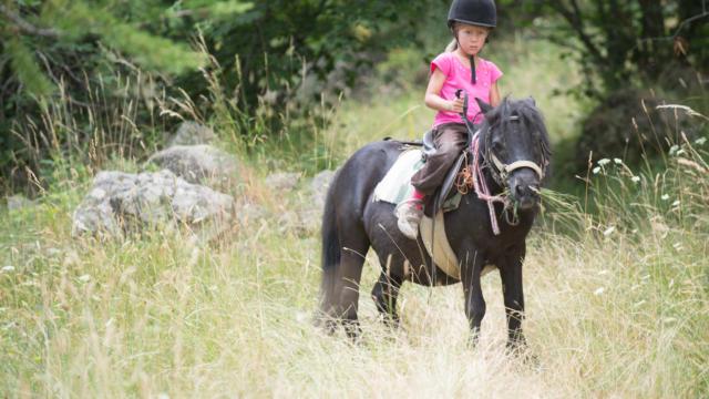 balade à poney dans le Champsaur