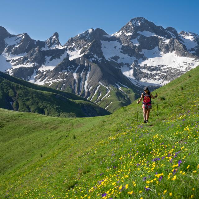 Randonnée sur les hauteurs du Valgaudemar en été