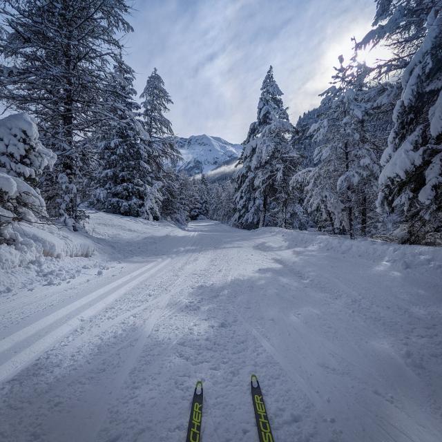 Gt Ski De Fond 1 1 1