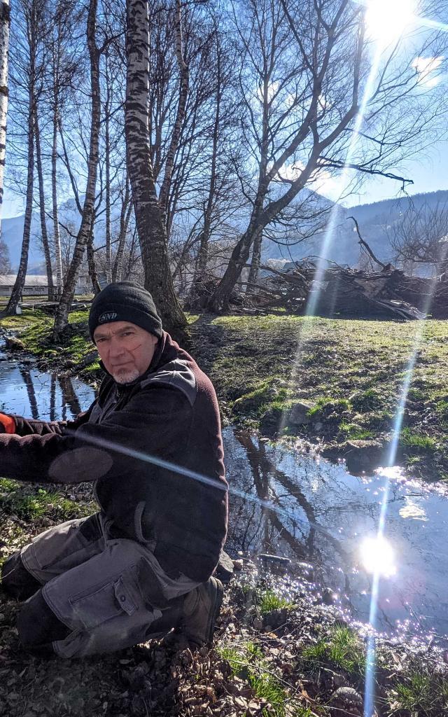 récolte de la sève de bouleau dans le Chamspaur