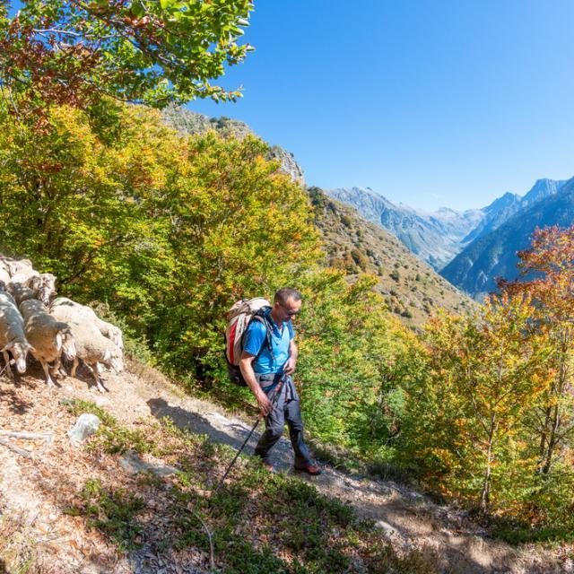 Desamontagnage dans la vallée du Valgaudemar