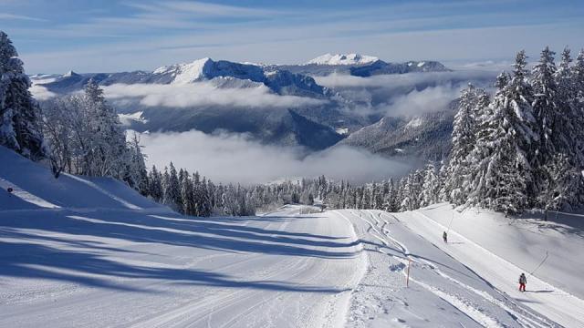 Le Creux De La Neige, Ski Alpin En Chartreuse