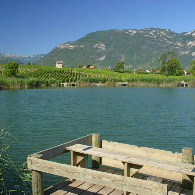 Lac De Saint AndrŽ Aux Marches