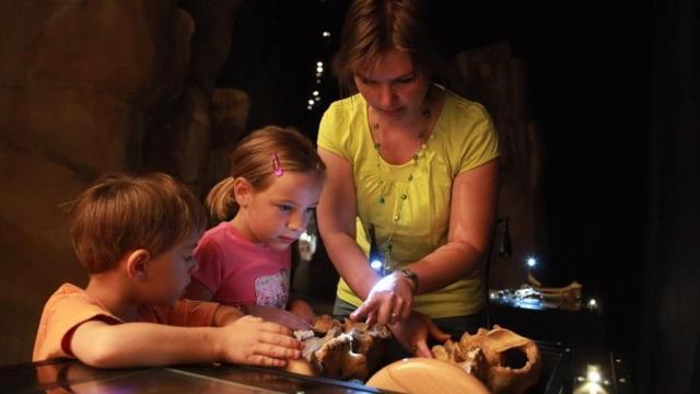 Musee Ours Cavernes Entremont Le Vieux