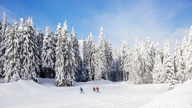 Ski De Fond Col De Porte