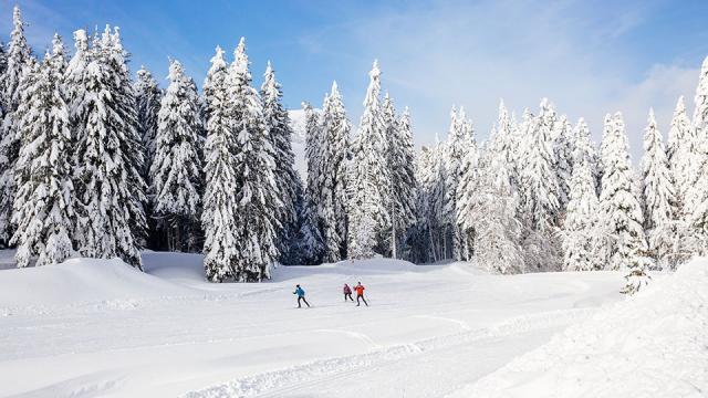 Ski De Fond Au Col De Porte Chartreuse