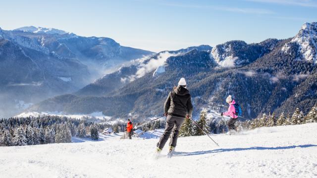 Ski Alpin Chartreuse