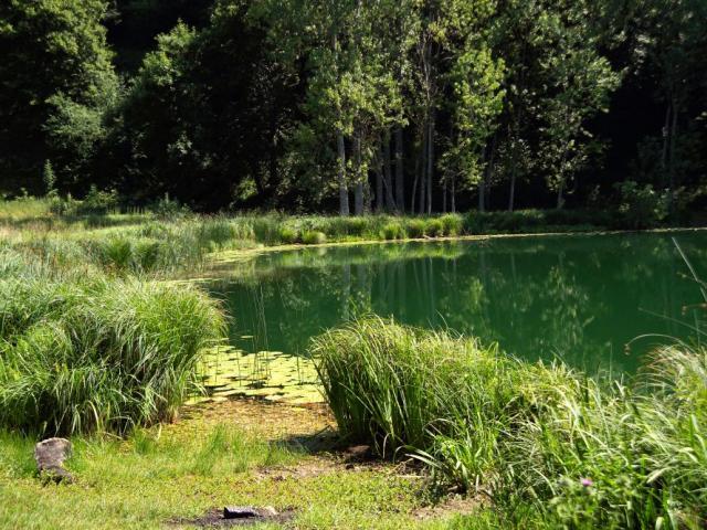 Lac St Sixte