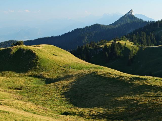 L'alpage du Charmant Som et la Pinéa