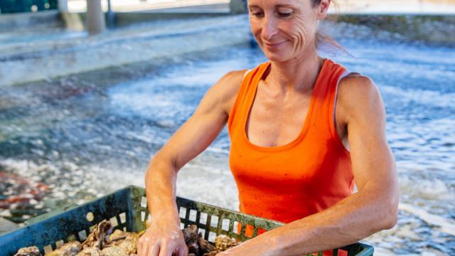 Ostreiculture Chatelaillon Plage Agence Les Conteurs 9