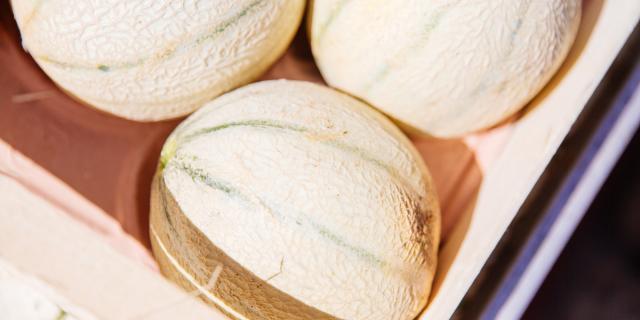 Melon Conteurs