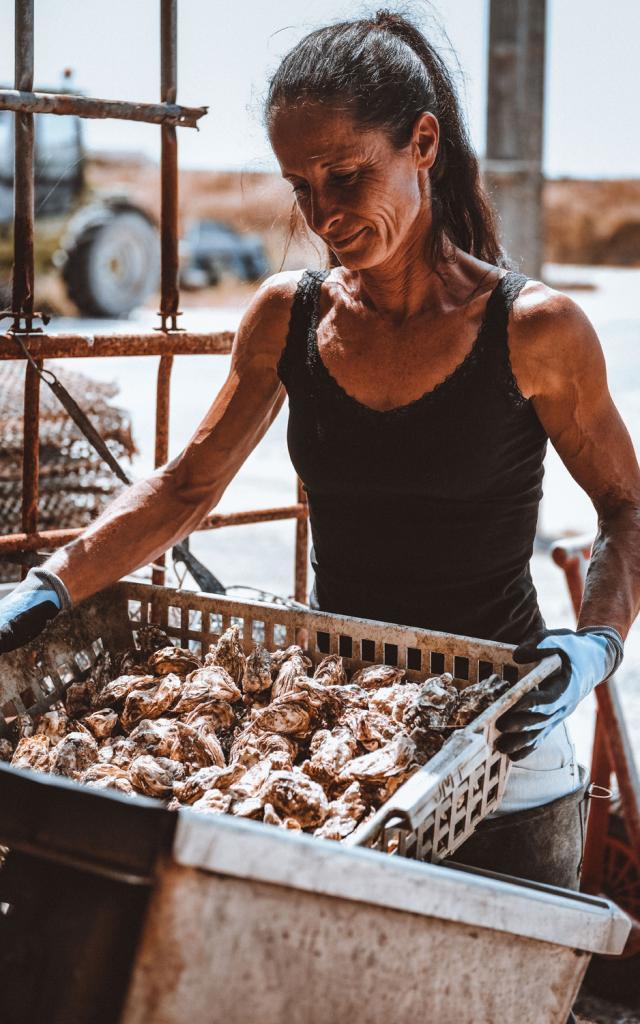 Ostreiculture Huitre Boucholeur Chatelaillon 2 Laurinda Hudgens