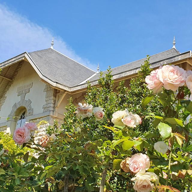 Jardin Rose