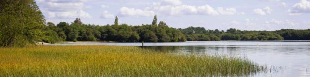 Lac de Léon | Côte Landes Nature