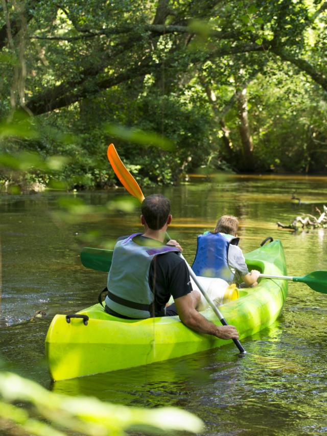 Descendre la Palue en canoë | Côte Landes Nature Tourisme