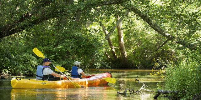 La Palue en canoë à Castets