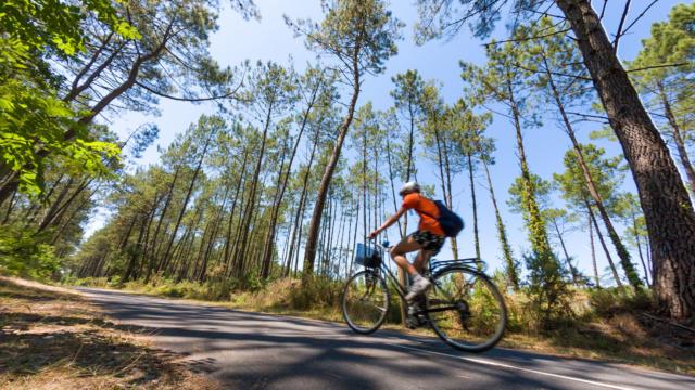 Piste cyclable à Léon | Côte Landes Nature