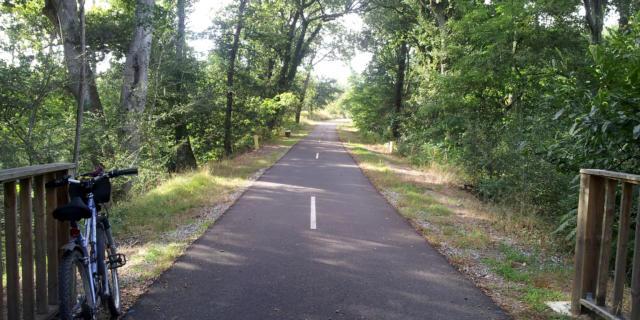 Lo Camin de Hè | Côte Landes Nature
