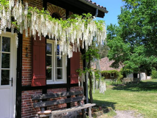 Maison Landaise typique | Côte Landes Nature