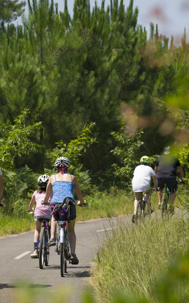 La Piste Cyclable du Vignac   Côte Landes Nature