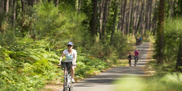 Piste cyclable en Côte Landes Nature