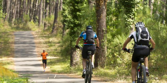à vélo dans les Landes | Côte Landes Nature Tourisme