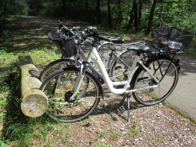 Louer votre vélo à Lit et Mixe | Côte Landes Nature