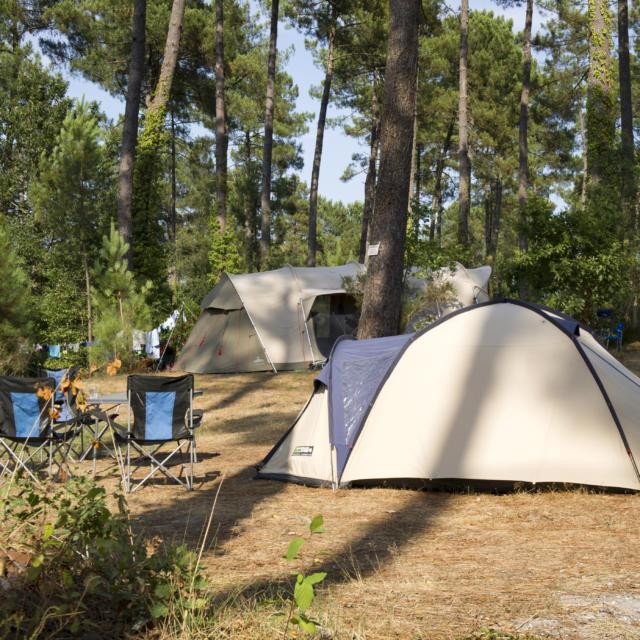 Camping en Côte Landes Nature