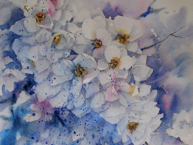 Aquarelle Fleurs Cerisier par Anne Larose
