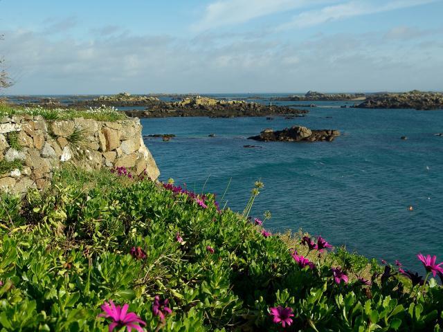 Archipel De Chausey Au Large De La Manche En Normandie (2)