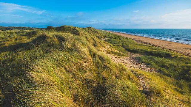 Espace naturel protégé des dunes d'Annoville