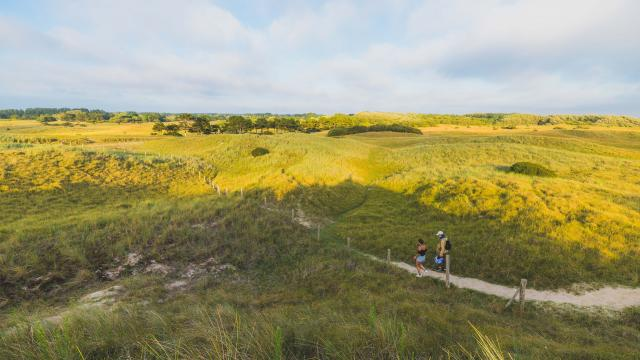 Se balader dans les dunes d'annoville