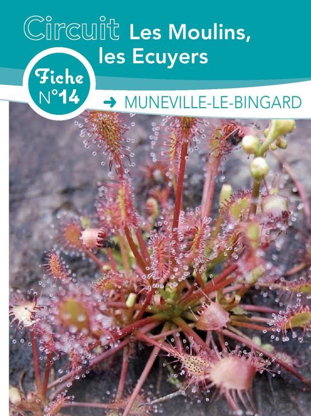 Fiche 14 Muneville Le Bingard des circuits de randonnée de Coutances Tourisme