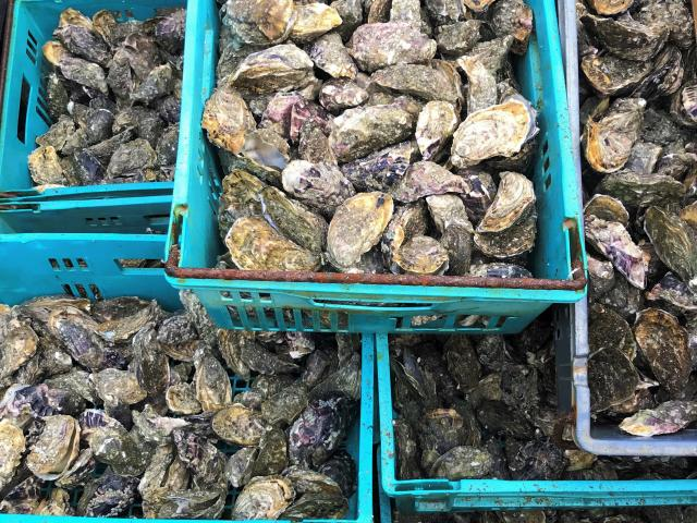 Huitres de Blainville-sur-Mer et produits du terroir de gouville-sur-Mer