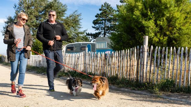Campings acceptant les chiens à Coutances mer et bocage