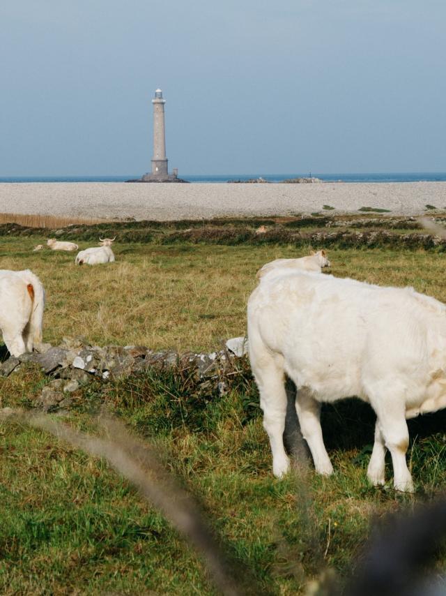 Goury dans la Hague en Normandie